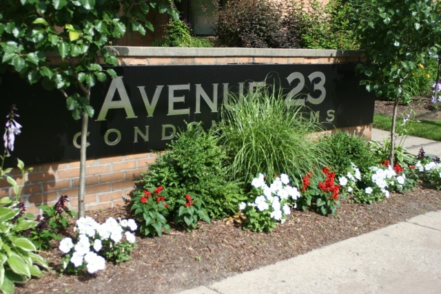 avenue-23